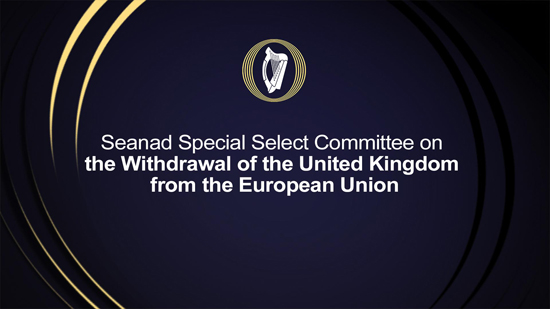 Seanad Special Select Committee on the Withdrawal of the United Kingdom from the European Union
