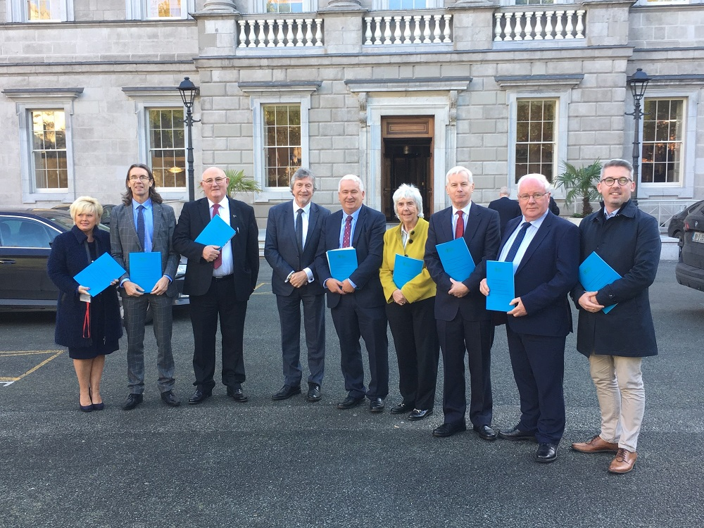 Oireachtas Members and guests outside Leinster House